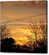 Early Bird Before Dawn Canvas Print