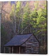 Early Cove Homestead Canvas Print