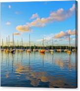 Early Morning 8768 Canvas Print