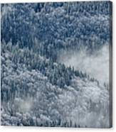 Early Morning After A Snowfall Canvas Print