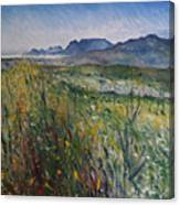 Early Morning Fog In The Foothills Of The Overberg Range Of Mountains Near Heidelberg South Africa. Canvas Print