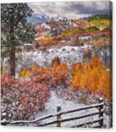 Early Snowfall At Dallas Divide Canvas Print