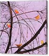 Early Spring 2 Canvas Print