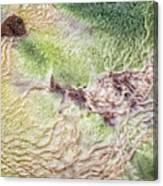 Earth Art 9492 Canvas Print