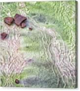 Earth Art 9493 Canvas Print