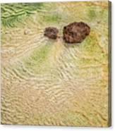 Earth Art 9498 Canvas Print