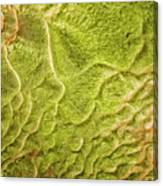 Earth Art 9516 Canvas Print