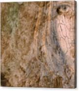 Earth Maiden Canvas Print