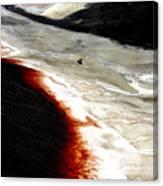 Earth's Arteries 2 Canvas Print