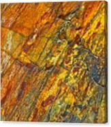 Earths Palette Canvas Print