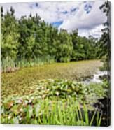 East Cramlington Nature Reserve Canvas Print