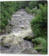 East Lyn River Canvas Print