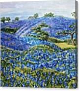 East Texas Bluebonnet Sampler Canvas Print