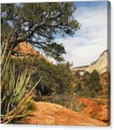 East Zion Afternoon Canvas Print