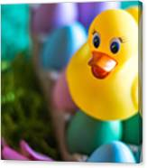 Easter Duckie Canvas Print