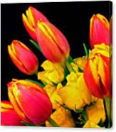 Easter Tulips And Roses Canvas Print