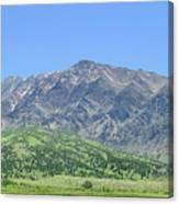Eastern Sierra July Canvas Print
