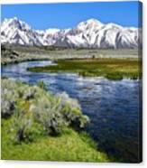 Eastern Sierra Mountains Canvas Print