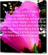 Ecclesiastes 3 A Time For Everything Canvas Print