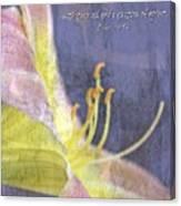 Ecclesiastes 9 6 Canvas Print