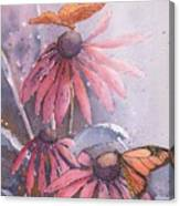 Echinacea And Butterflies Canvas Print