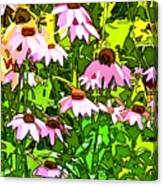Echinacea Imagined Canvas Print