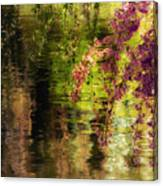 Echoes Of Monet - Cherry Blossoms Over A Pond - Brooklyn Botanic Garden Canvas Print