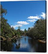 Econlockhatchee River Canvas Print