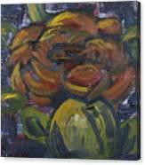 Ecuador Rose Canvas Print