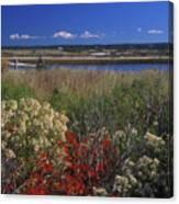 Edgartown Lighthouse Autumn Flowers Canvas Print