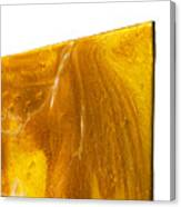 Edge Close Up Of Autumn Reflections Canvas Print