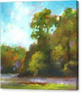 Edge Of The Marsh Canvas Print