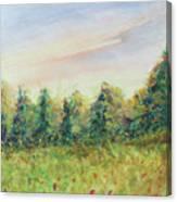 Edge Of Trees Canvas Print