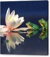 Edible Frog Rana Esculenta Two Frogs Canvas Print