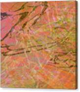 Edition 1 Double Wow Canvas Print