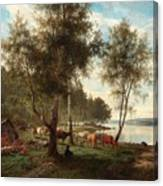 Edvard Bergh, Summer Landscape With Cattle And Birches. Canvas Print