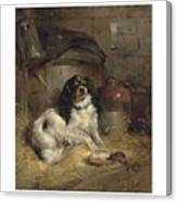 Edwin Douglas 1848-1914 A Cavalier King Charles Spaniel Canvas Print