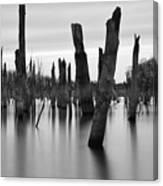 Eerie Lake Canvas Print
