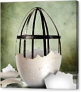 An Egg Canvas Print