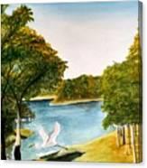Egret Flying Over Texas Landscape Canvas Print
