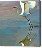 Egret Getting Ready For Take Off Canvas Print
