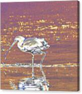 Egret II Canvas Print