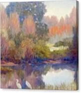 Egrets Canvas Print