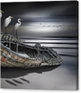 Egrets Watching Canvas Print