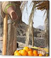 Egypt Oranges At The Oasis Canvas Print