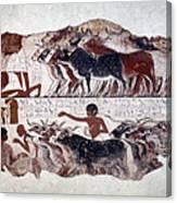 Egypt: Tomb Painting Canvas Print
