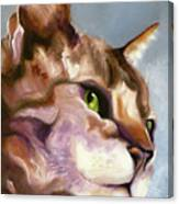 Egyptian Mau Princess Canvas Print