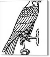 Egyptian Symbol: Falcon Canvas Print