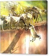 Eid And Seek Canvas Print