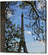 Eiffel Tower Tree Canvas Print
